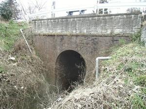 Cimg3624